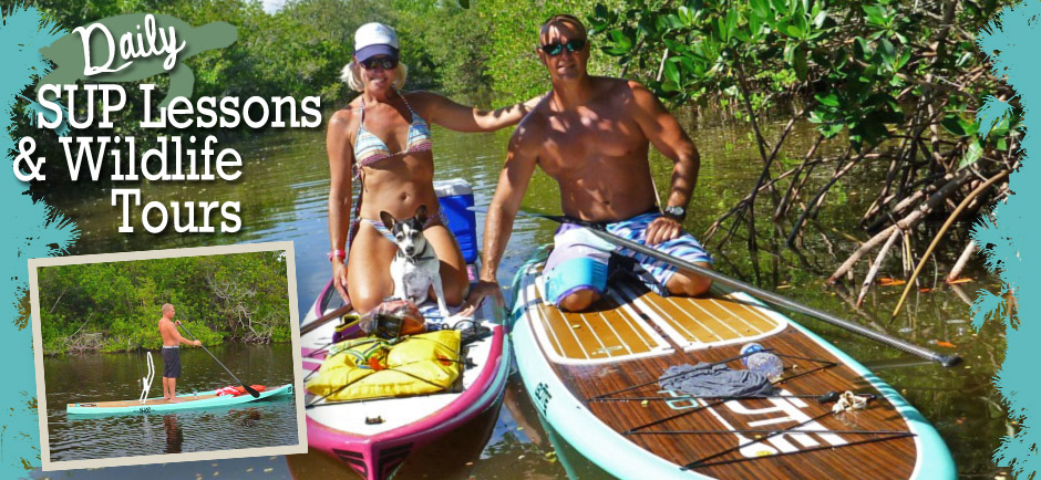 sup lessons header2